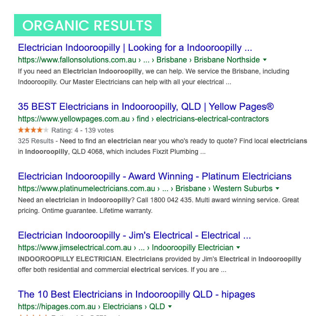 Organic Google search results example